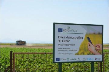 Apostar por una agricultura sostenible: bueno para el medioambiente y para el bolsillo